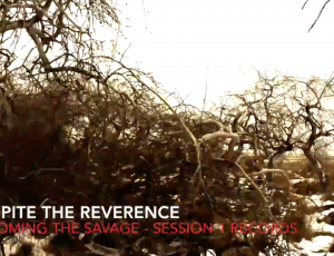 Despite The Reverence – Becoming the Savage